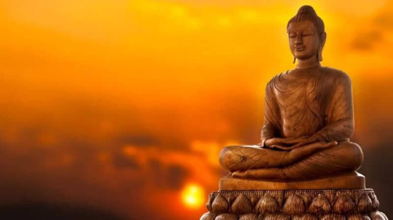 Top 23 Best Books On Buddhism of All Time Review 2020