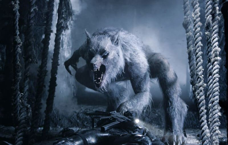 Top 34 Best Werewolf Books of All Time Review 2020