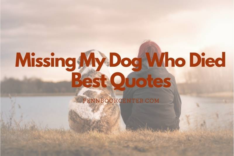 Missing My Dog Who Died Quotes